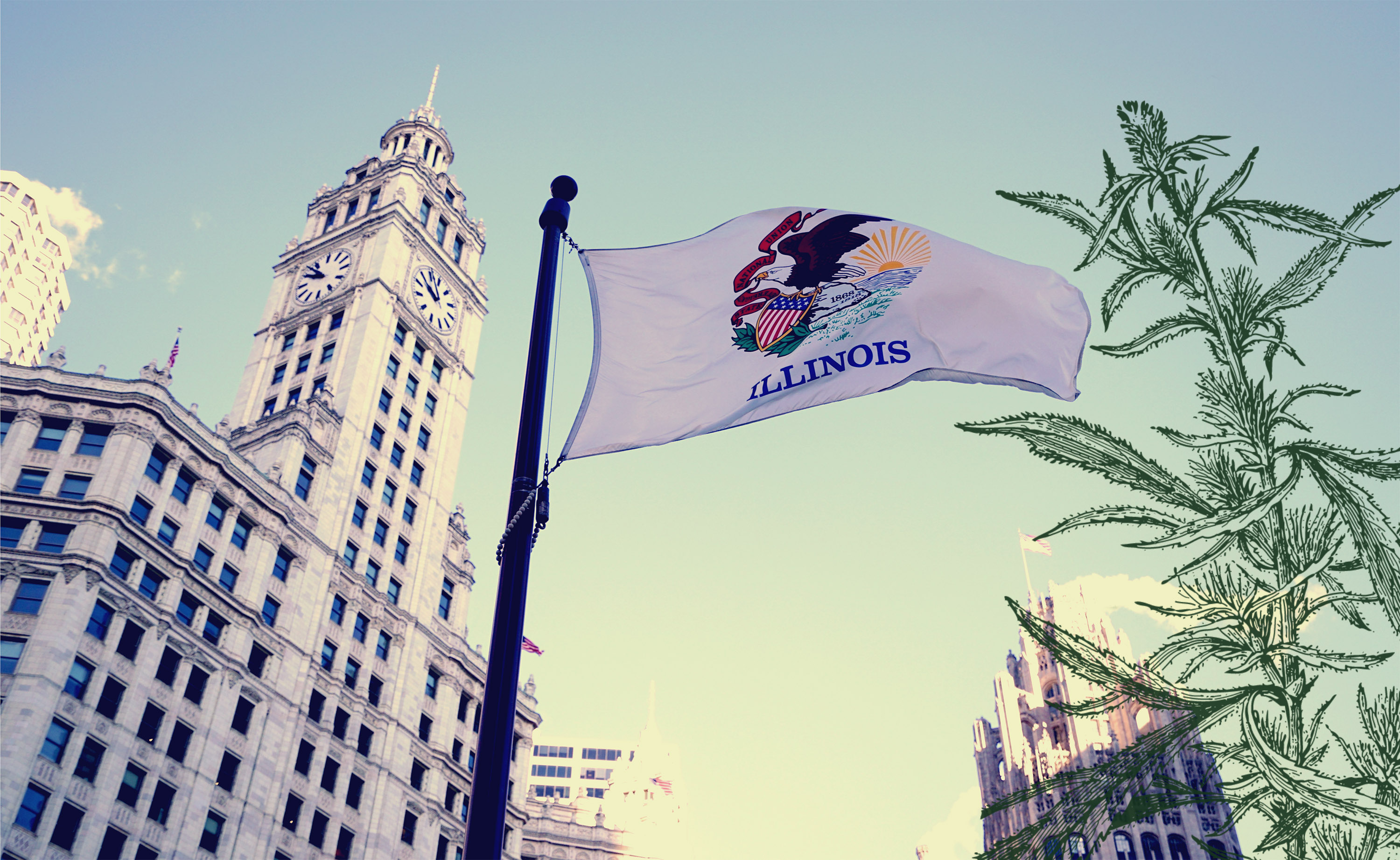 Here's Illinois Recreational Marijuana Business Details