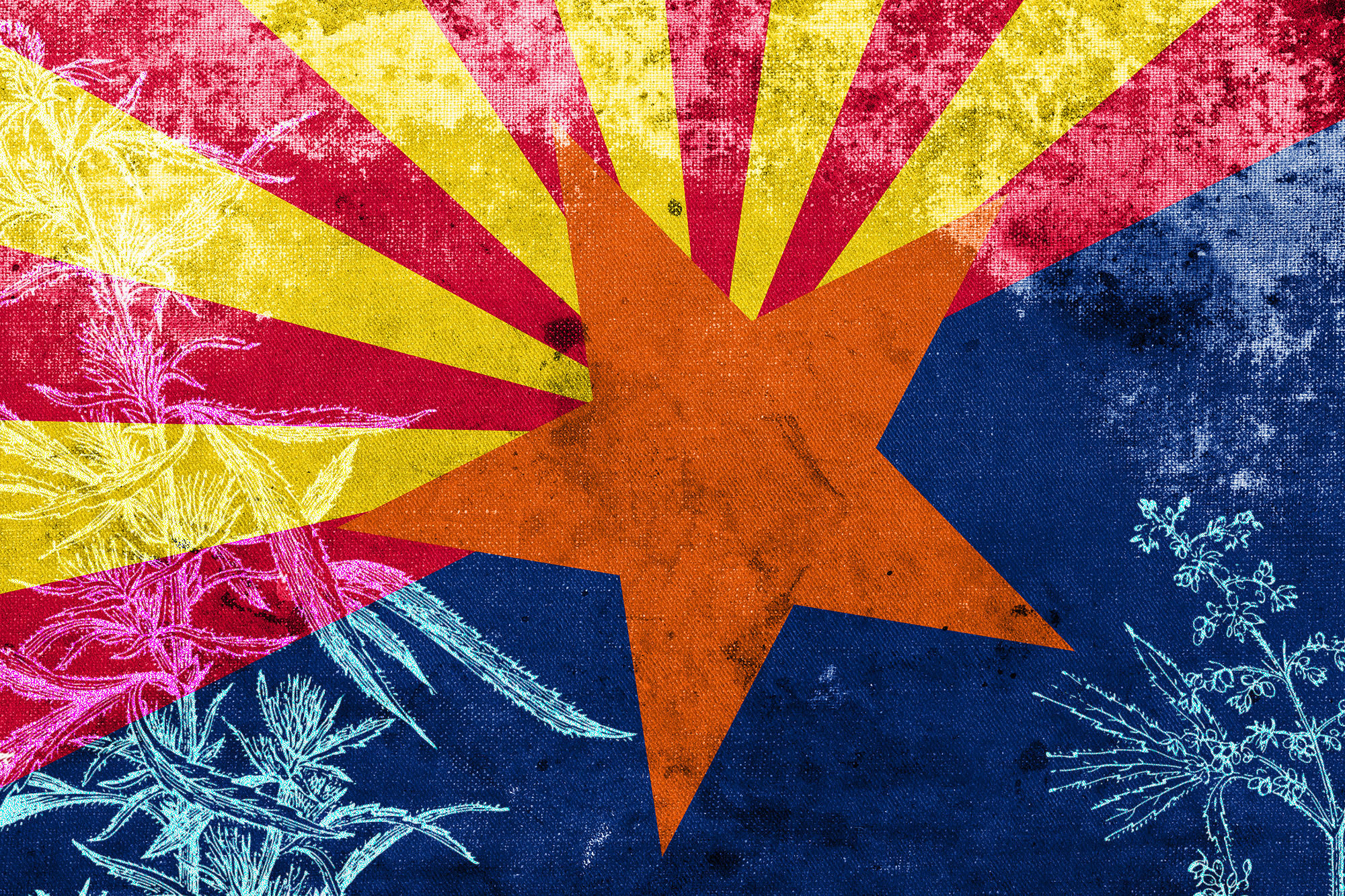 Arizona To Issue Additional Medical Marijuana Dispensary Licenses