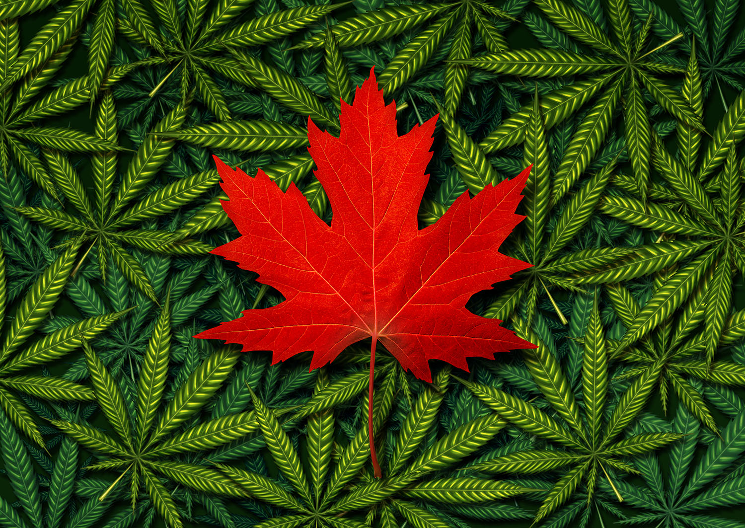 How Canada's Marijuana Legalization Changes the Game