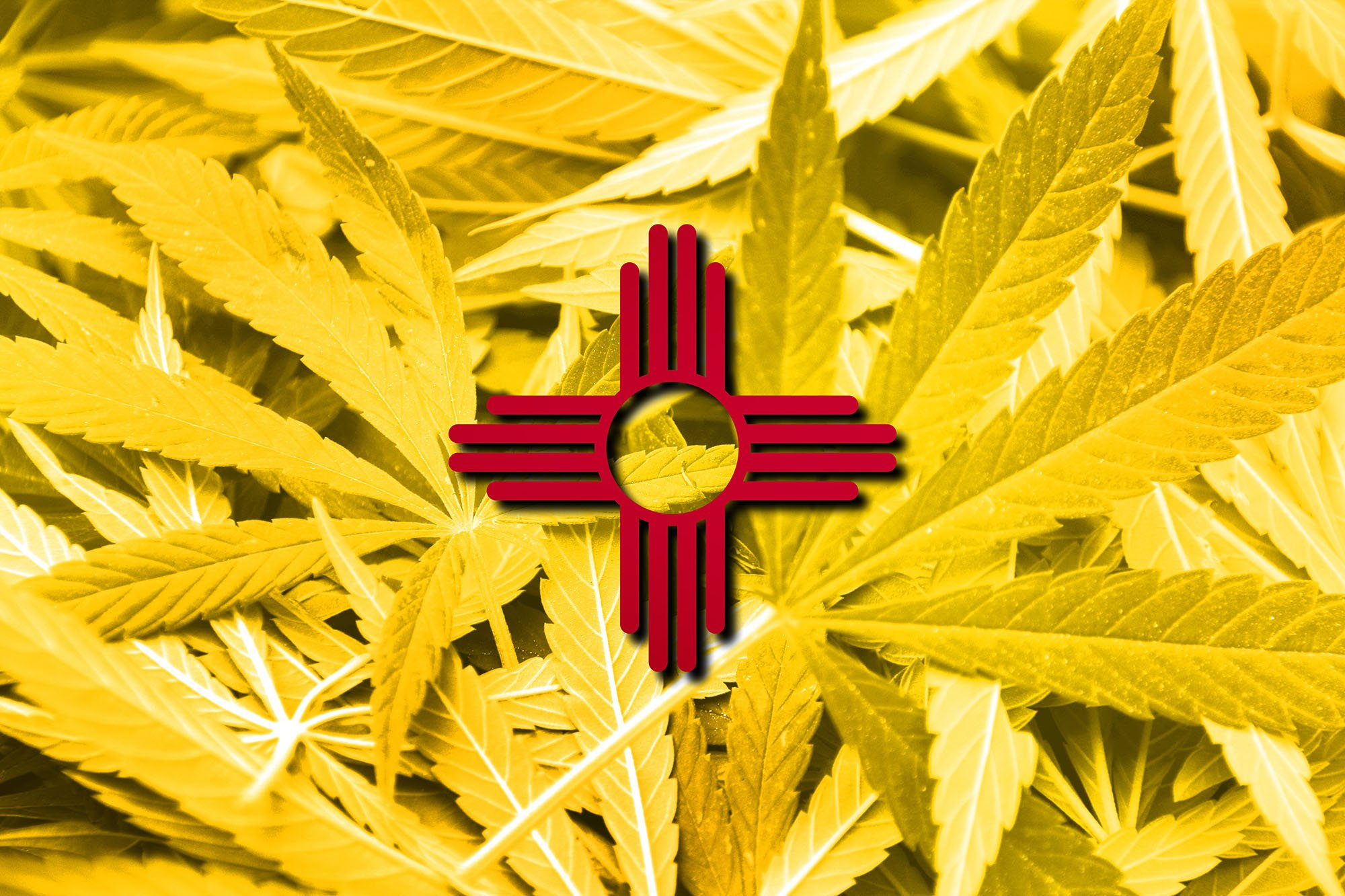 New Mexico Governor's Expert Panel Releases Marijuana Legalization Recommendations