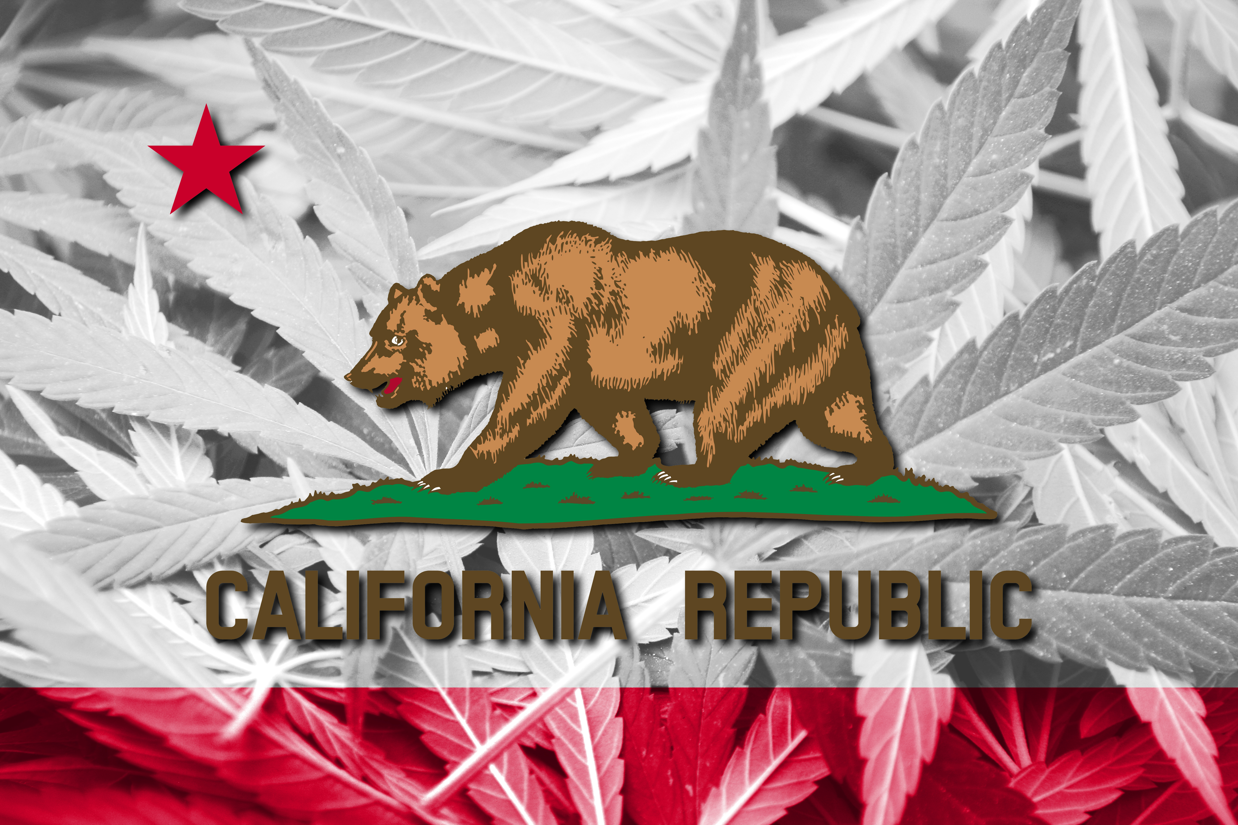 California's Constant, but Limited, Marijuana Business Opportunities