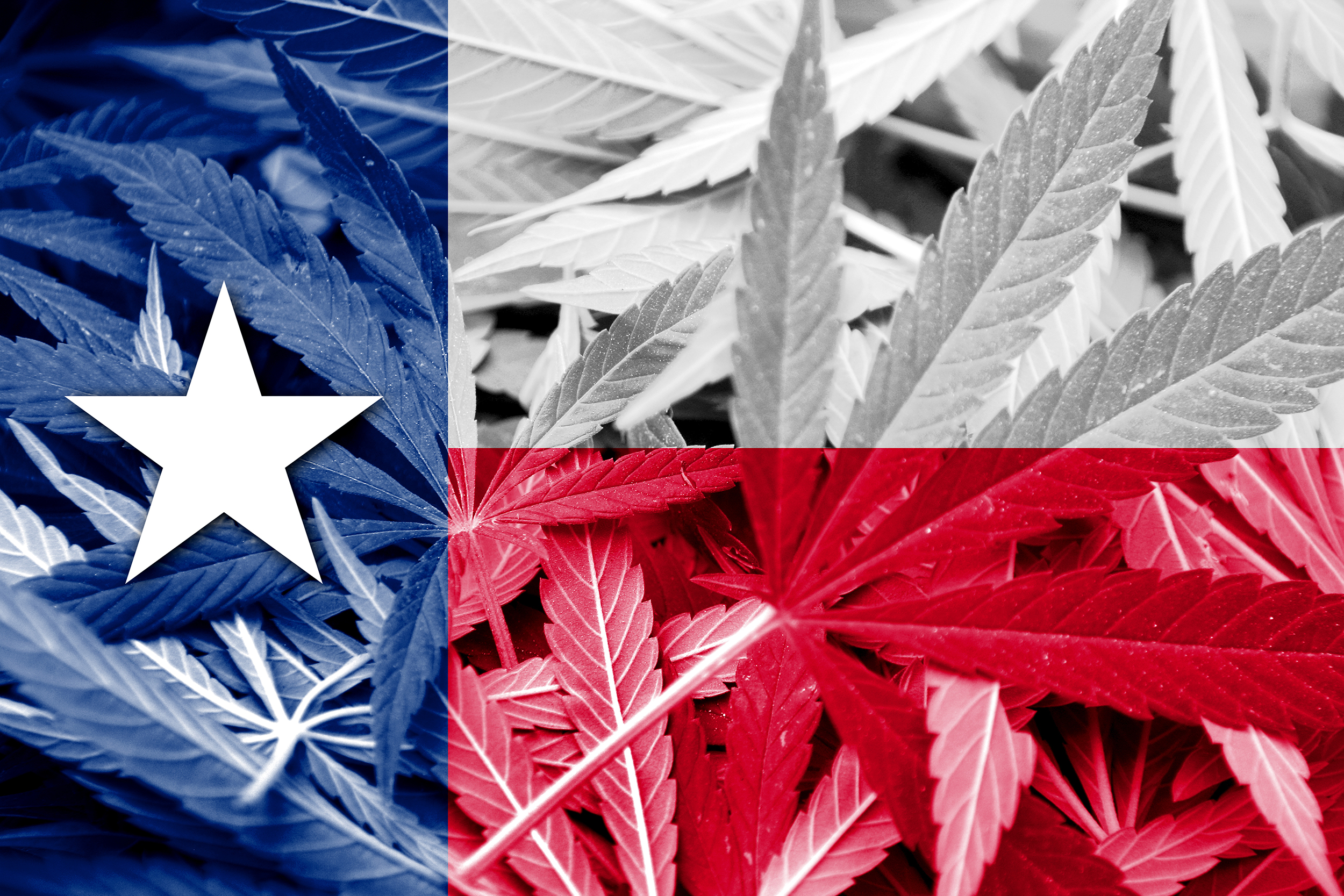 Texas Expands Medical Marijuana Program