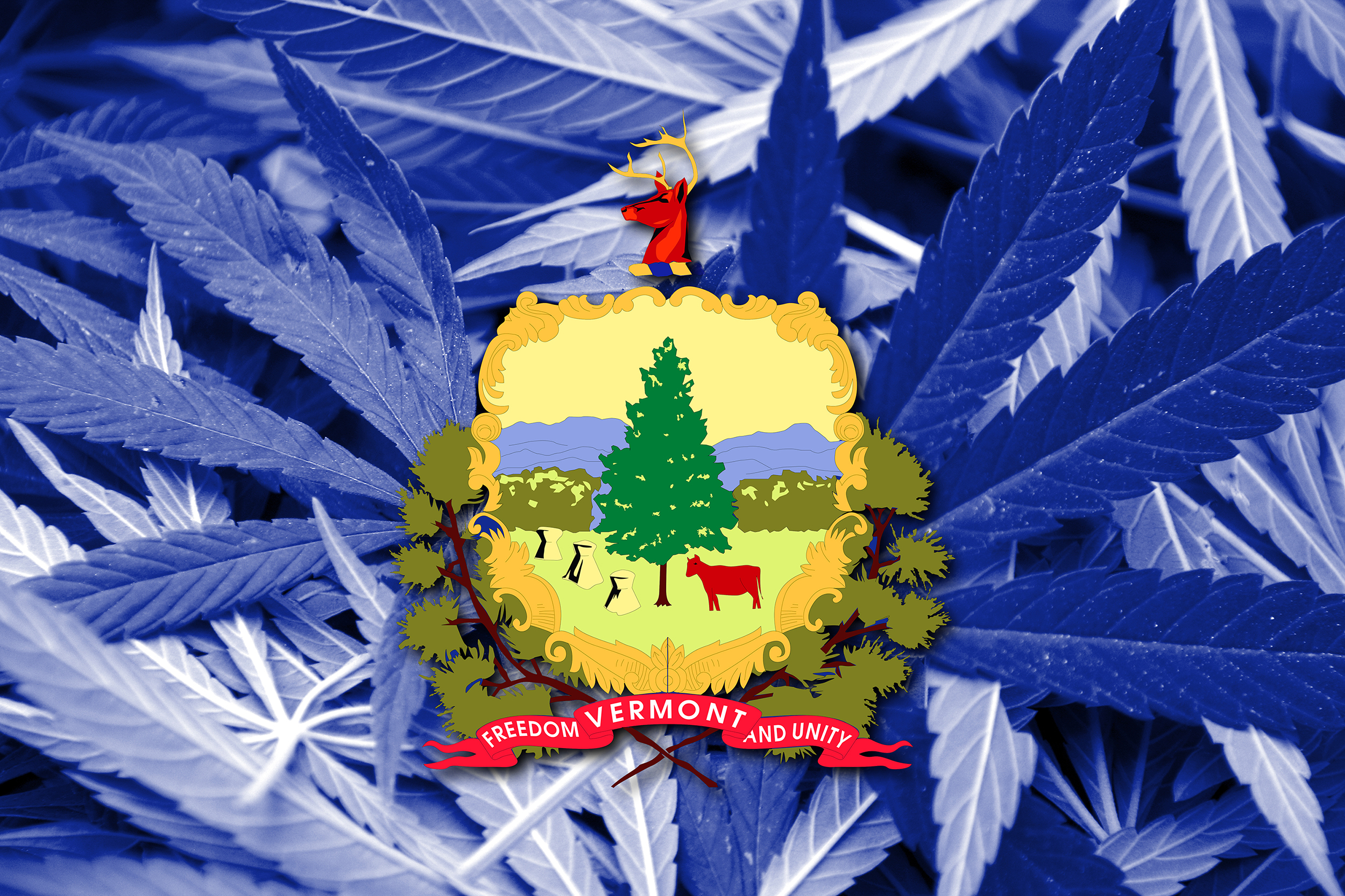 Vermont to Establish and Regulate Recreational Marijuana Businesses