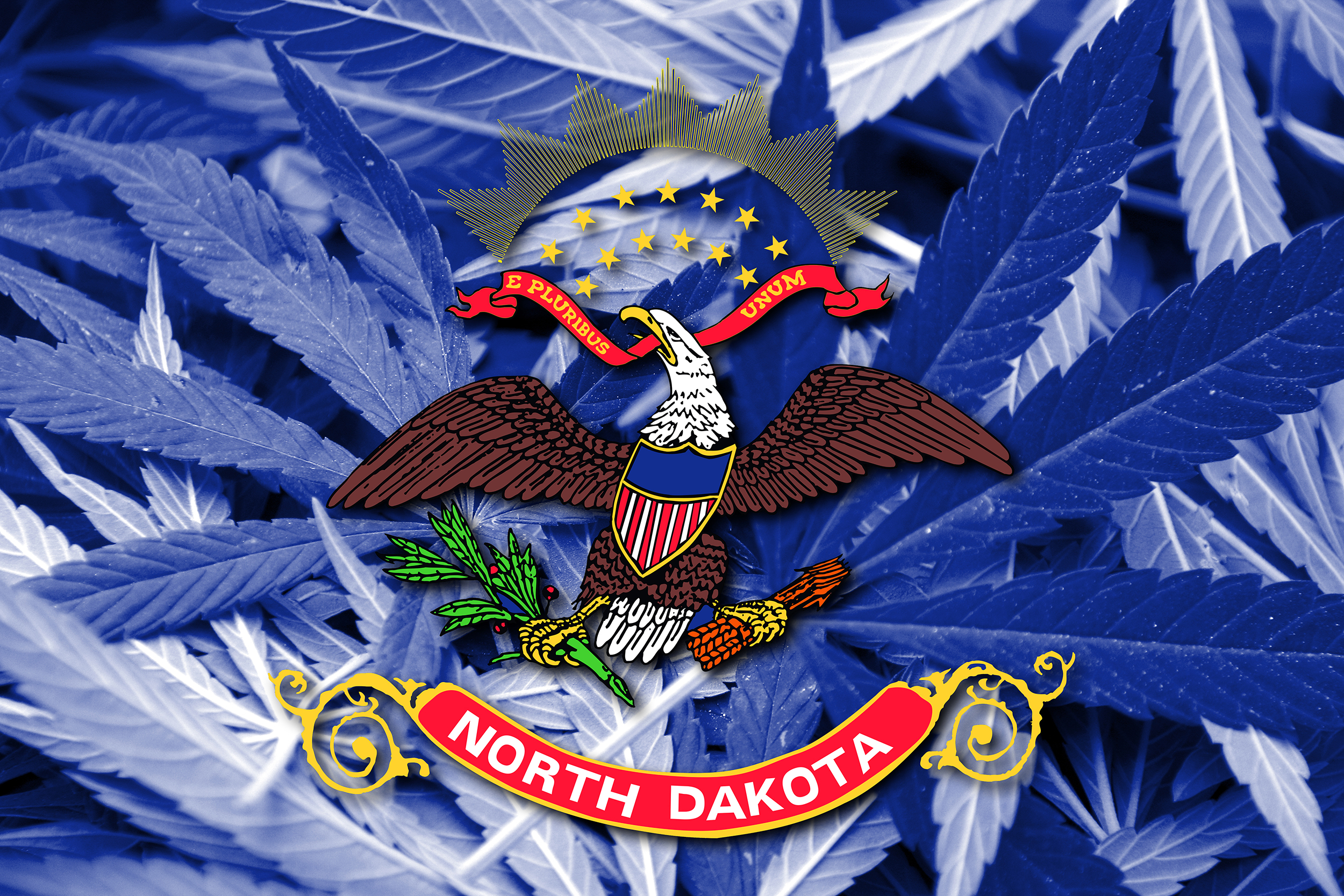North Dakota To Accept Dispensary License Applications