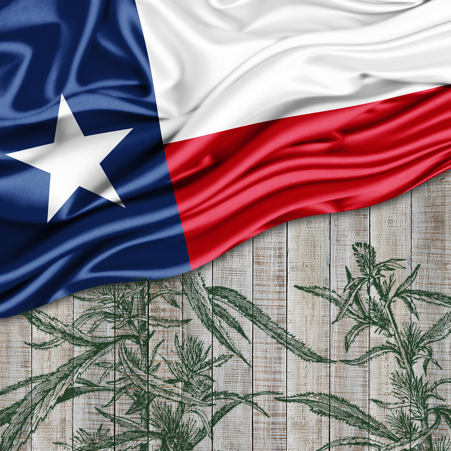 Texas Medical Marijuana Expansion Bill Advances